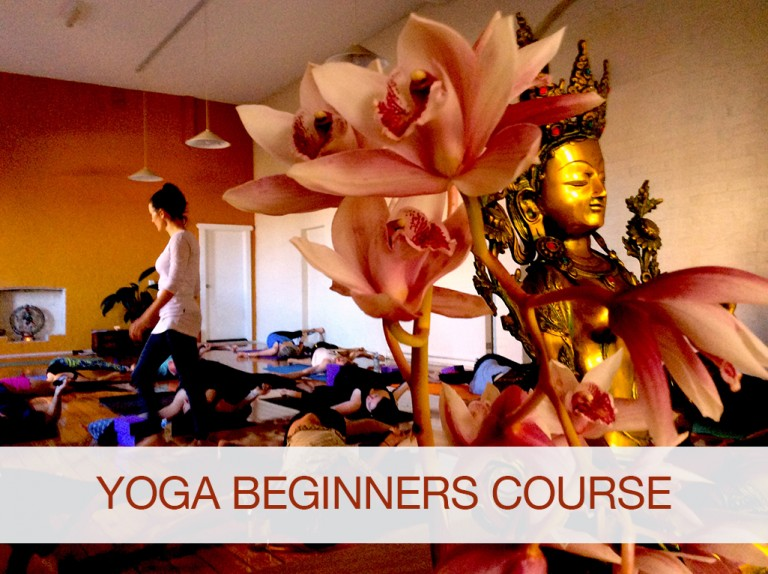 Yoga Beginners Course—starts May 31