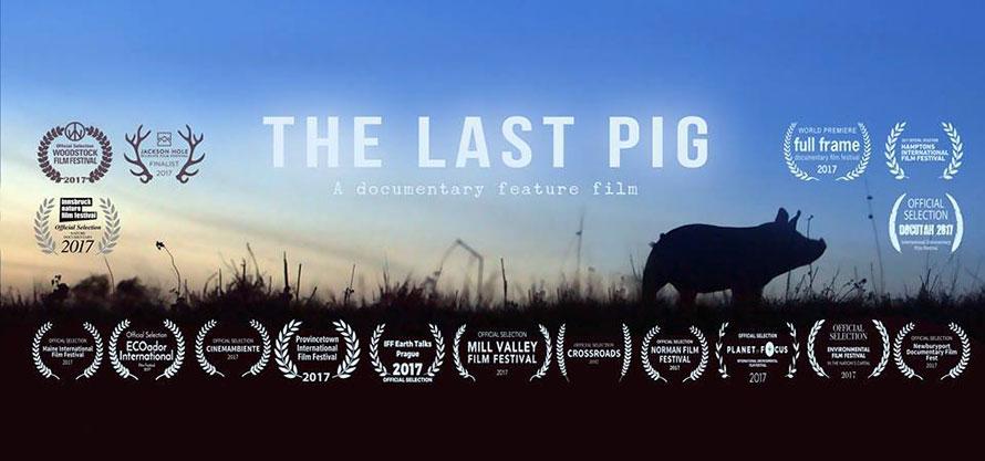 The last pig movie